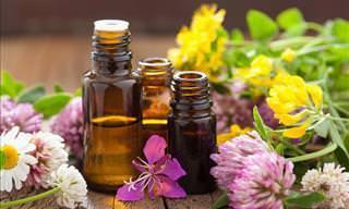 12 Óleos Essenciais Naturais Eficientes no Alívio da Dor