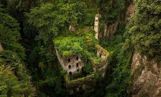 11 Lugares Que a Natureza Tomou de Volta