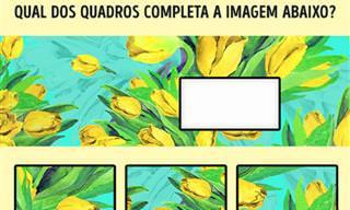 Teste: Você Consegue Encaixar as Imagens Corretamente?