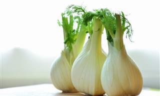 12 Benefícios Incríveis da Erva-Doce Para a Saúde