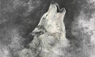 7 Animais espirituais e seus profundos significados