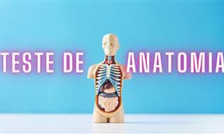 Teste: Você conhece bem a anatomia humana?