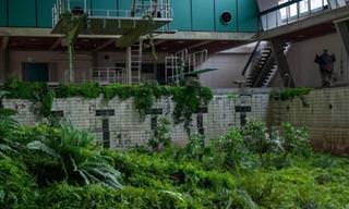 Edifícios abandonados e intrigantes