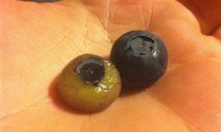 15 Frutas Que Parecem Melhores Com Casca