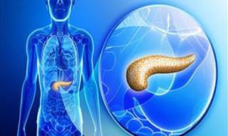 Câncer de Pâncreas: Como Saber o Diagnóstico