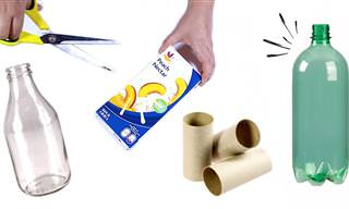 Jamais imaginei que um rolo de papel pudesse virar isso!