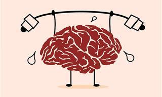 4 Exercícios Para o Cérebro Que Estimulam a Memória e Outras Funções
