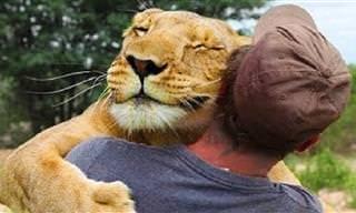 Todo o mundo gosta de um abraço, e os bichos também!