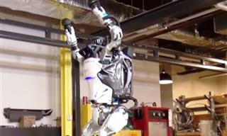 3 Robôs Ultramodernos Que Mostram a Evolução da Robótica