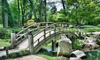 24 dos Mais Belos Jardins Japoneses