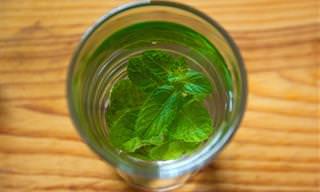 12 Remédios Naturais Para Acabar Com Alergias