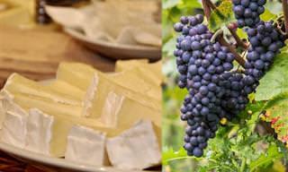 Aprenda as Combinações Perfeitas Entre Queijos e Vinhos