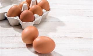 5 Alimentos Ricos em vitamina D Para Melhorar Sua Saúde