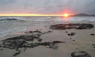 Veja a Beleza Das Ilhas Galápagos...