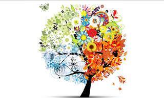 Primavera, Verão, Outono ou Inverno? Descubra Qual Estação é Você!