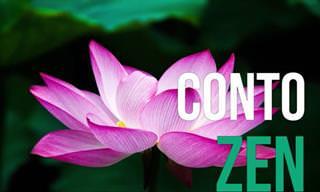 O Conto Zen: Aprendizado e Sabedoria em Nossas Vidas