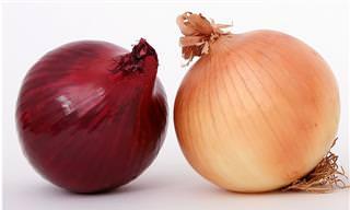 Comparação Entre Vegetais e Suas Variações de Cores