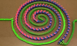 Estou hipnotizado com esses truques de dominós!