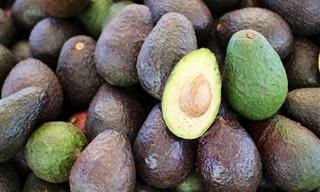 10 Incríveis benefícios do abacate para a saúde