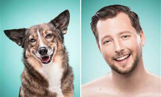 Humanos Reproduzindo Expressões Caninas