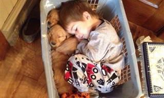 17 Lindos Momentos Entre Crianças e Seus Cães