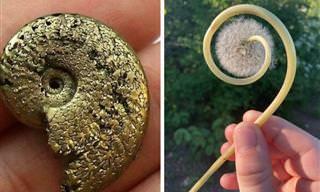 16 Pequenos tesouros encontrados por acaso