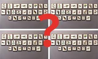 Teste: Encontre a Imagem Diferente