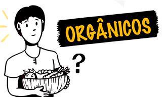 Entenda por que precisamos de alimentos orgânicos