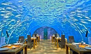 Conheça os 12 Restaurantes Mais Incríveis do Mundo!