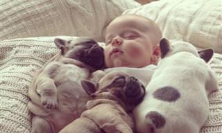 Essas Crianças e Seus Cães Vão Deixar Seu Dia Melhor!