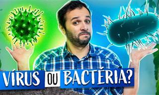 Bactérias e Vírus: Qual a Diferença?