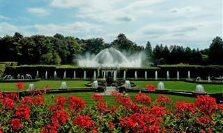 Encante-se Com um Dos Jardim Botânicos Mais Belos do Mundo!