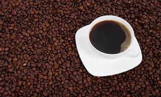 O Que Acontece Quando Você Para de Ingerir Cafeína
