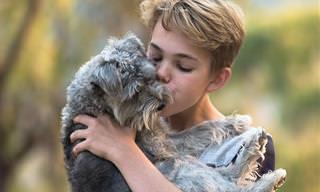 Como os Animais Expressam Amor?