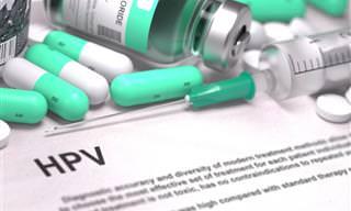 Tudo o Que Você Precisa Saber Sobre HPV