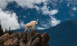 Imagens que mostram a beleza do nosso planeta
