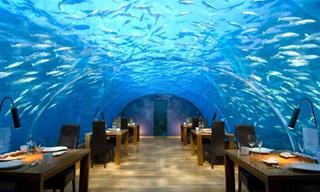 18 Restaurantes Que Você Nunca Vai Esquecer