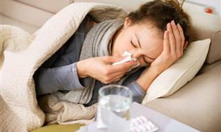 8 Remédios Naturais e Eficazes