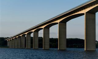 Humor: A Ponte de 9 Milhões