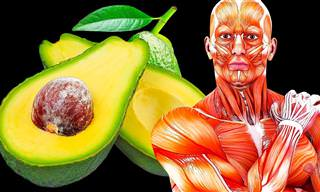 Coma 1 abacate por dia durante um mês e veja o resultado