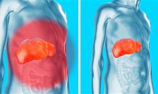 Saiba Agora Como Remover Toxinas dos Rins, Fígado e Bexiga