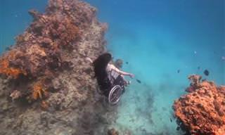 Ela mergulhou no fundo do mar em uma cadeira de rodas!