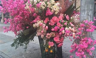 Designer floral transforma lixo em belas decorações