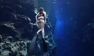 Mergulhadores revelam incríveis imagens do oceano
