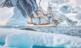 16 fascinantes imagens de fenômenos naturais e culturais