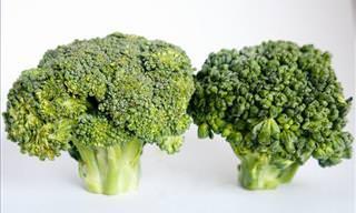 15 Benefícios Para à Saúde de Consumir Brócolis