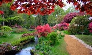 15 Fascinantes Conceitos de Jardins