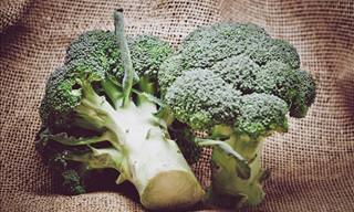 Provas Científicas de Que o Brócolis Realmente Faz Muito Bem