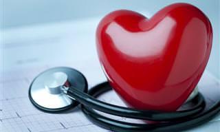 Doenças cardiovasculares em mulheres e refeições noturnas