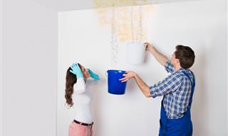 10 Dicas Para Facilitar a Limpeza de Suas Paredes